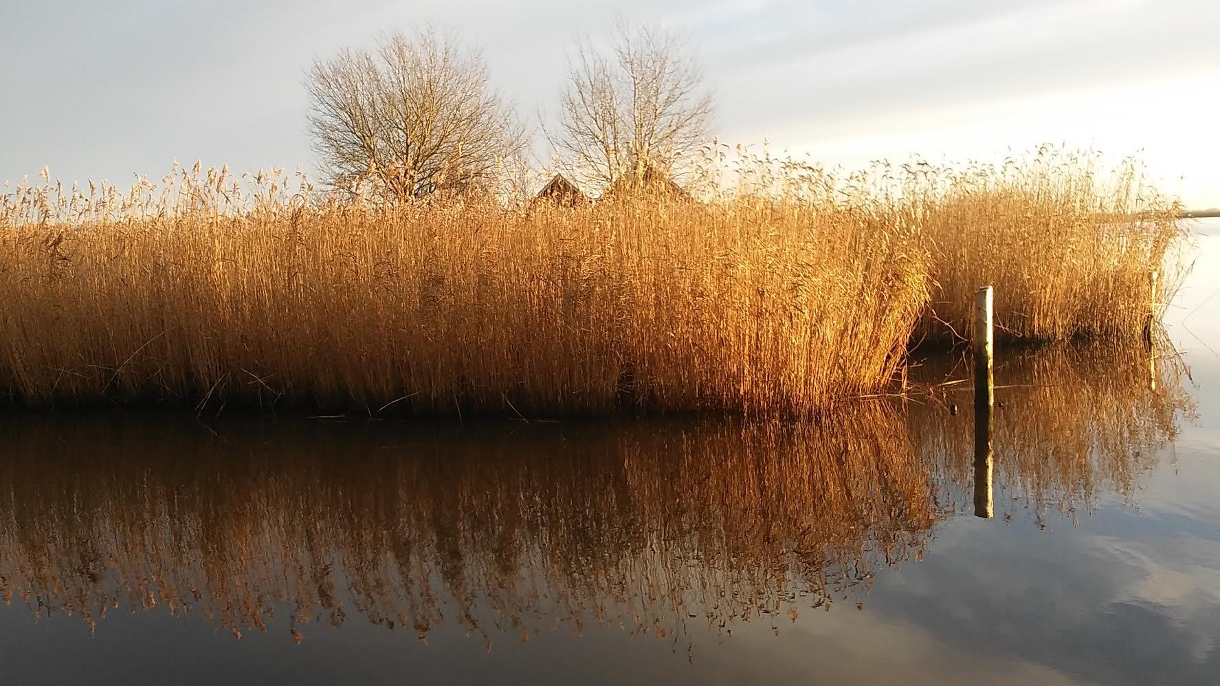 Proceskonsulent for 13 landsbyer i Kronjylland